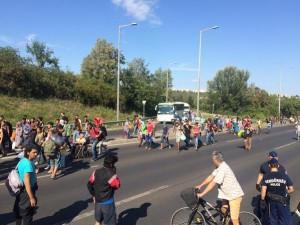 Pencari-Suaka-dari-Hungaria-Jalan-Kaki-Hingga-30-km-Kami-Pilih-Jalan-Saja-Tak-Punya-Pilihan